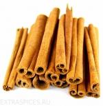 Корица пряная Циннамон (Cinamomum Culilawan)